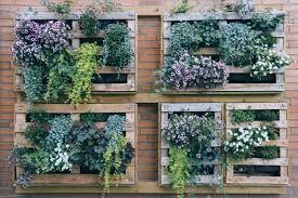 Giardino-verticale-fai-da-te?-