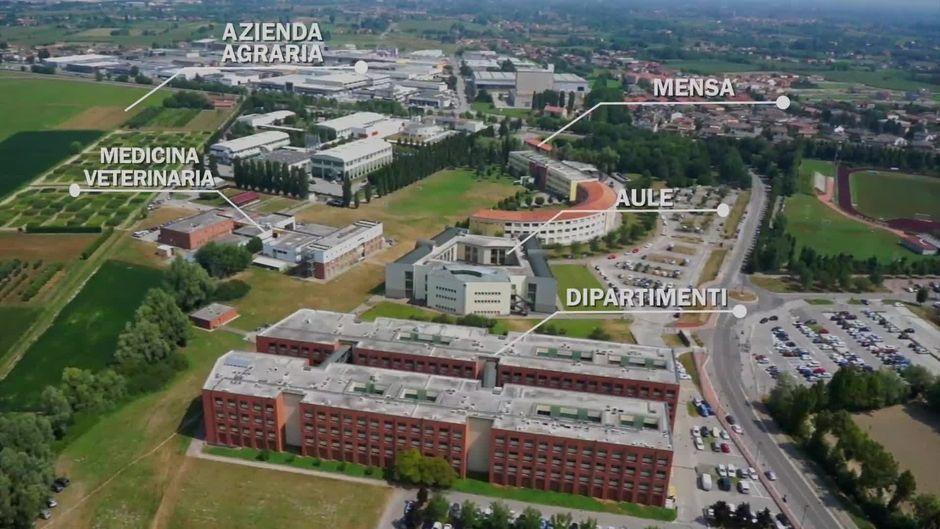 Università-degli-Studi-di-Padova